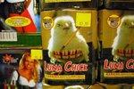 cabel_sasser_luna_chick_5.jpg